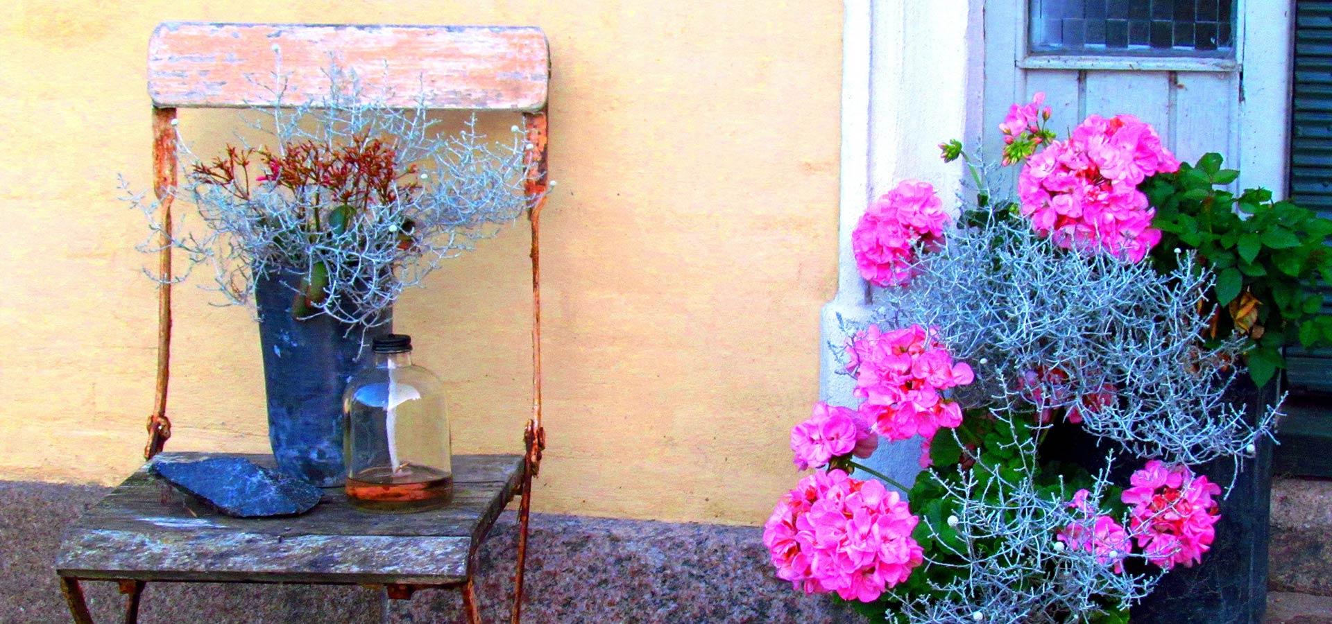 Garten g nstig gestalten bonava for Garten gunstig gestalten